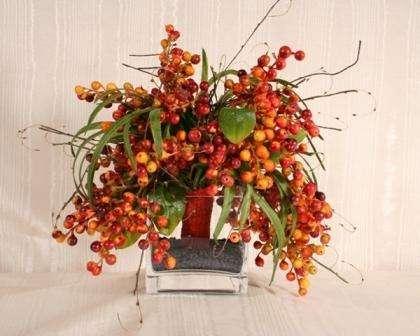 Такие ягоды прекрасно сочетаются с осенними листьями