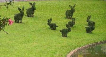 Формируем садовую скульптуру