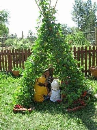 шалаш с зелеными растениями