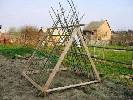 После сборки шалаша можно приступать к засеванию семян