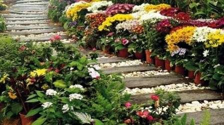 Получив множество вариантов исполнения дорожек для своего сада и детальную инструкцию по их укладке