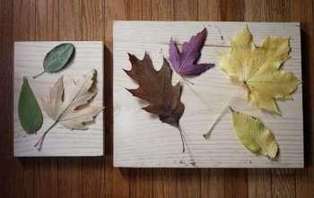 После этого вам нужно будет намазать клеем поверхность основы, а также листья. Приклеить листья нужно лицевой стороной к панно, чтобы прожилки были сверху, и поделке можно было придать рельефную фактуру.
