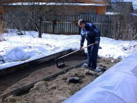 В марте важно провести подкормку грунта, чтобы повысить во время сезона урожайность плодовых деревьев и кустарников.