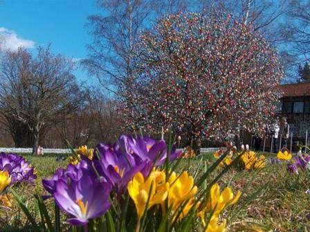Пасхальное дерево – такой же по значимости символ, как у нас елка на новый год.