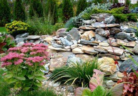 Альпинарий – это каменистая горка, на которой высажены растения и кустарники. С помощью этого вида цветника можно существенно преобразить ландшафтный дизайн. Организовать альпийскую горку легко даже на небольшом участке.