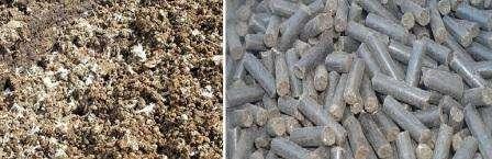 В состав птичьих экскрементов входит много полезных веществ, которые благоприятно влияют на рост и урожайность овощных культур.