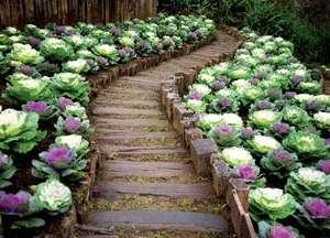 Красиво оформленные клумбы и цветники делают территорию более оживленной, одновременно придавая ей завершенный внешний вид.