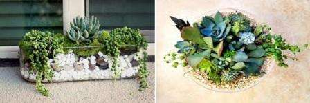 В первую очередь подберите стеклянную емкость для высадки растений. Это могут быть круглые, квадратные и прямоугольные вазы