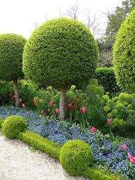 Миксбордер очень красив из-за обилия собранных в нем растений. Как правило, все они имеют разные размеры, окрасы и сроки цветения.