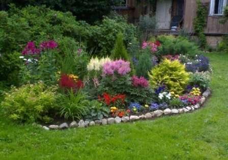 Растения разделяются на три основных группы по сложности ухода за ними: неприхотливые, трудоёмкие и менее трудоёмкие.
