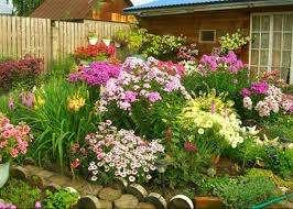 Больше сил вы потратите при высадке многолетников в цветники в саду. За ними придется больше ухаживать и рассаживать раз в три года.