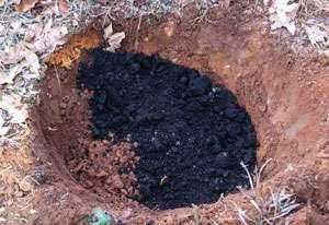 Посадочная яма должна быть достаточно глубокой, около 0,5 м. Если вы собираетесь высадить несколько кустов гортензии рядом, то соблюдайте расстояние между ними, так как с возрастом куст разрастается. В яму обязательно нужно доба