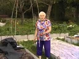 Домашний огород без хлопот для пожилых позволяет экономить на продуктах, поскольку семена стоят намного дешевле, чем готовые плоды. У пожилых родителей появится новое занятие, и они смогут с пользой проводить досуг, несмотря на ограниченные возможности.