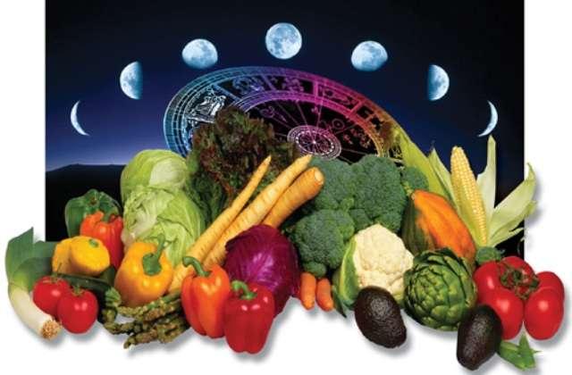 календарь садовода огородника