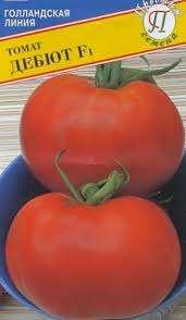 Благоприятную пору для высевания семян следует подобрать, учитывая климатические условия области проживания и сверхранние сроки созревания томата Дебют f1. Когда у рассады вырастет три-четыре на