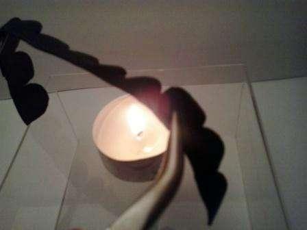 Теперь нужно придать лепесткам подходящую форму с помощью пламени свечи. Если вы используйте замш, то к огню поворачивайте кожаную сторону. Важно не подносить сильно близко к огню кожу, чтобы она не обуглилась