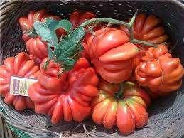Плоды томатов могут быть традиционного красного, а также желтого, бурого, оранжевого цвета, а форма – круглой, вытянутой, в форме сердца, ребристой. Томат Американский ребристый - сорт, который многие огородники с удовольствием выращивают на своих огородах. Точных данных о его селекции нет, поэтому это