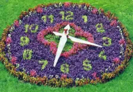 Клумба-часы – на ней цветы подоб