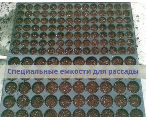 специальные лотки для рассады | www.svoimi-rukamy.com